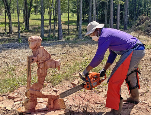 Letting Creativity Flow– Torrance Holmes has fun with tree stumps left behind at Yoda Creek